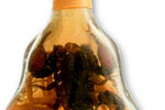 Thumbnail image for Who Won the Bottle of Cambodian Scorpion Wine?