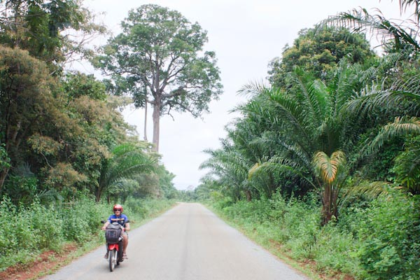 Photos: Riding the Bolaven Plateau, Part 1
